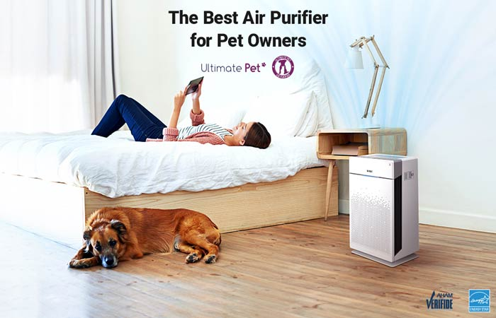 The 12 Best Air Purifiers Reviews in 2021