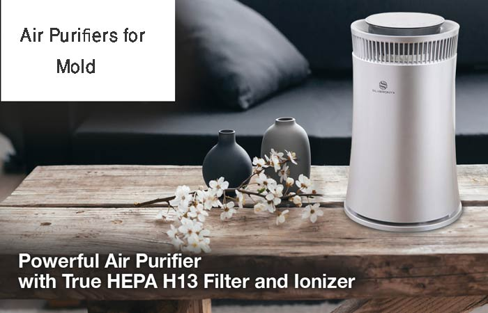How to Choose The Best Air Purifier For Mold?