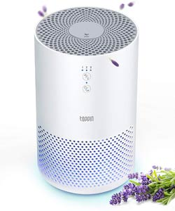 TOPPIN HEPA 4-in-1 Air Purifier With Filter Night Light